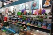 Pet Shop Brisbane North - A Rare Retail Gem