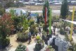 Award Winning Tasmanian Howrah Nursery in Hobart, Very Profitable, $100,000+sav