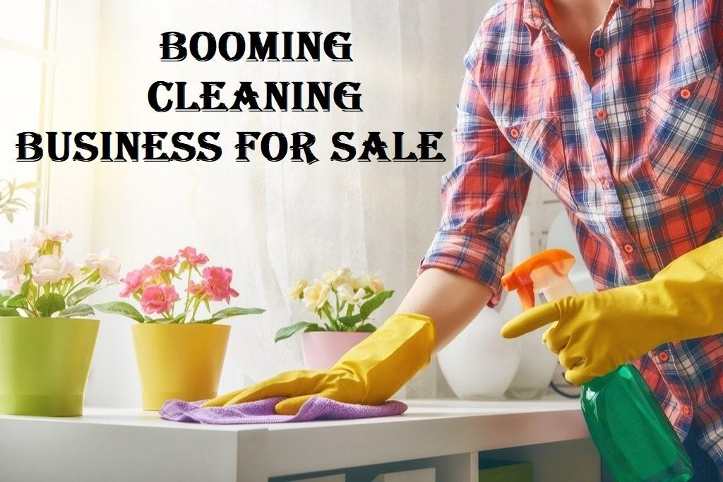 BOOMING cleaning business (contracts in place)